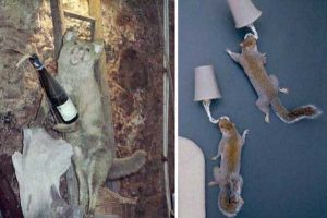 funny-taxidermy-fails (5)