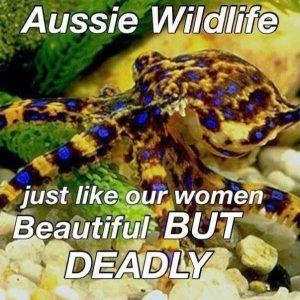 australia-funny-pics (6)