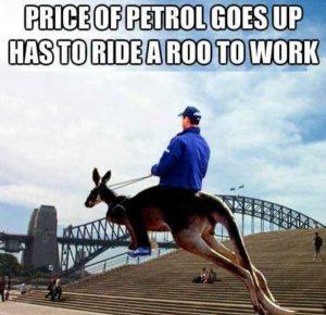 australia-funny-pics (9)