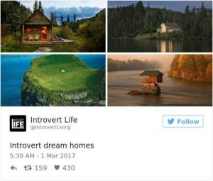 hilarious-introvert-tweets (40)