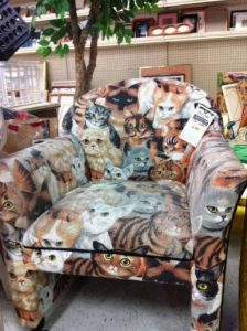 weird-things-thrift-stores (34)