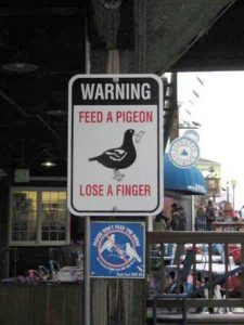 wtf-confusing-signs (24)