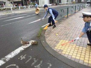 wtf-japan-pics (11)