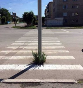 wtf-russia-pictures (3)