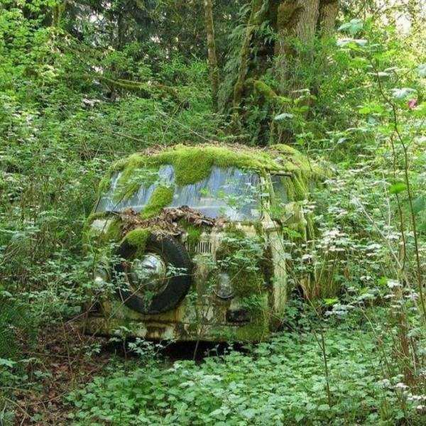 abandoned-places-pics (12)