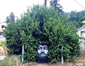 nature-themed-street-art (17)