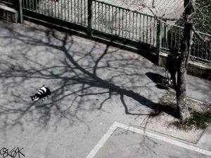 nature-themed-street-art (27)