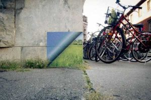 nature-themed-street-art (28)