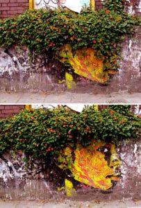 nature-themed-street-art (42)