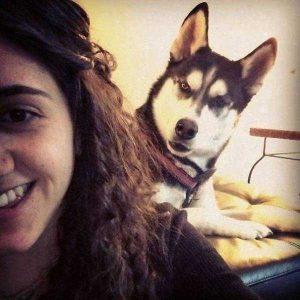 photobombing-dogs (15)