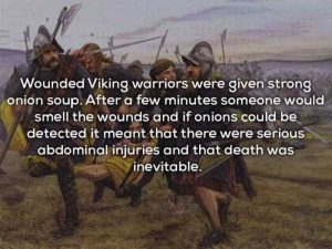 vikings-facts (11)