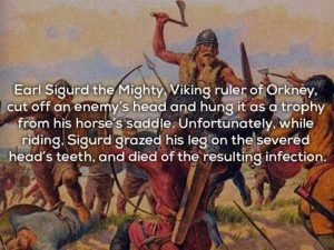 vikings-facts (14)