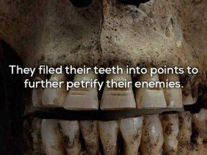 vikings-facts (2)
