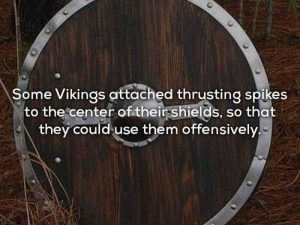 vikings-facts (6)