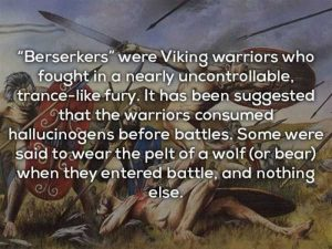 vikings-facts (8)
