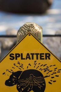 funny-zoo-signs (10)