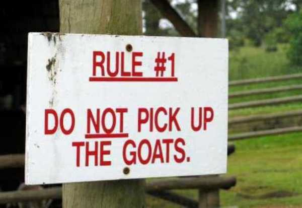 funny-zoo-signs (12)