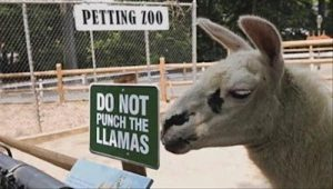 funny-zoo-signs (14)