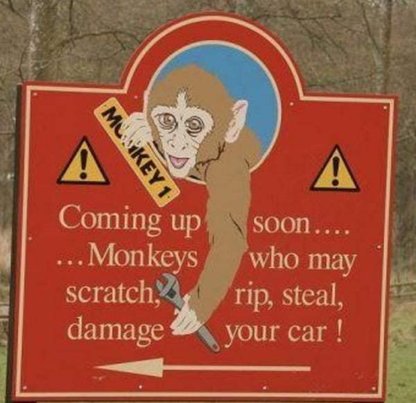 funny-zoo-signs (15)