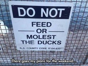 funny-zoo-signs (17)