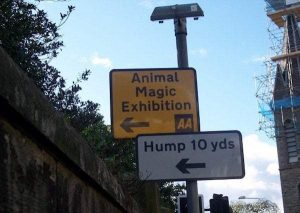 funny-zoo-signs (19)