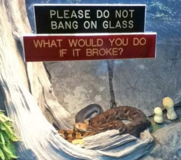 funny-zoo-signs (2)