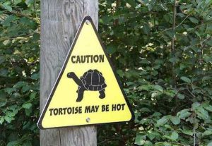 funny-zoo-signs (25)