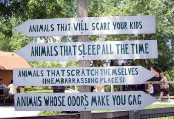 funny-zoo-signs (26)