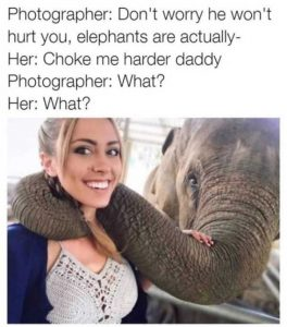hilarious-memes (7)