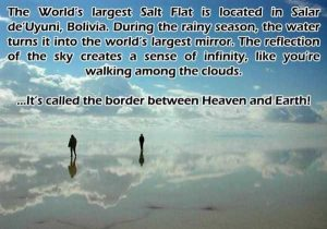 interesting-facts (30)