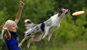 perfectly-timed-photos (9)