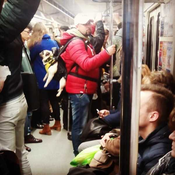 russian-subway-fashion (15)