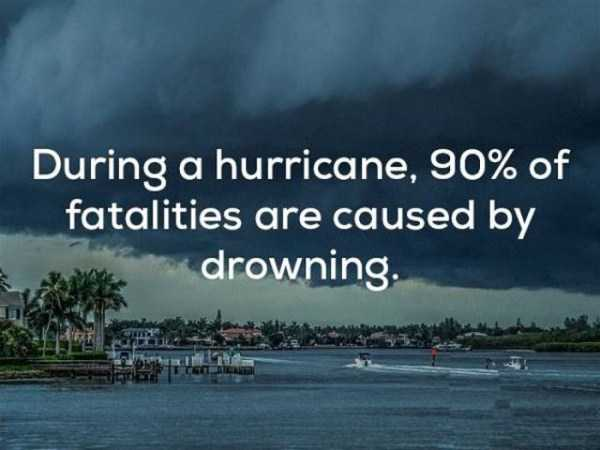 weather-facts (10)