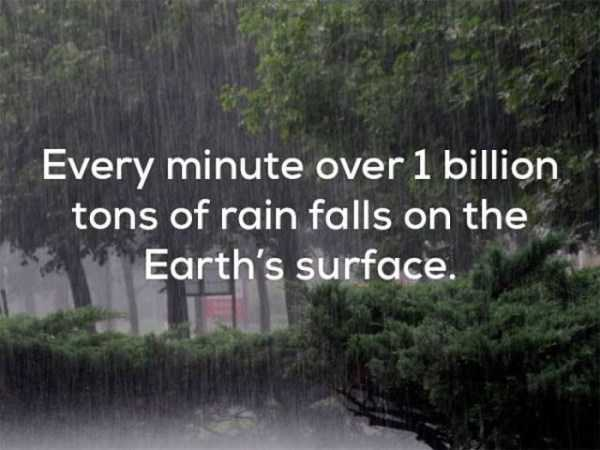 weather-facts (24)