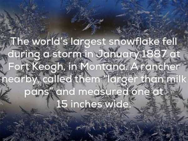 weather-facts (25)