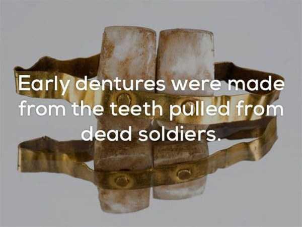 weird-facts (1)