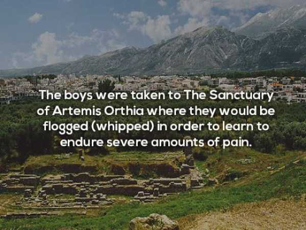 cool-things-about-sparta (6)