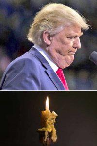funny-photoshops (20)