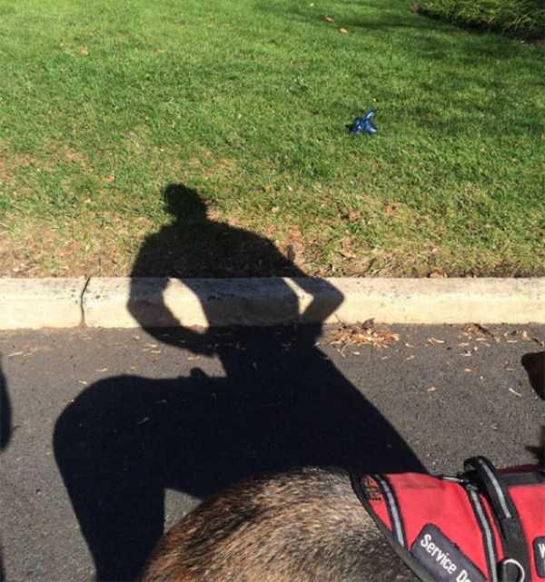 funny-shadows (36)