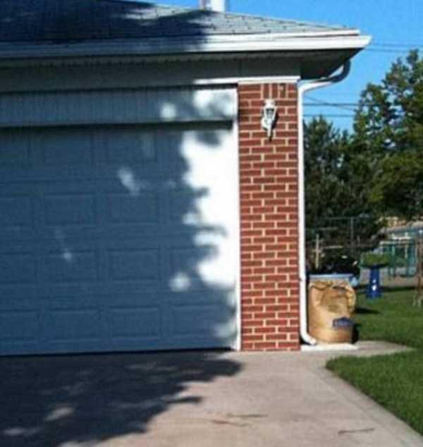 funny-shadows (54)