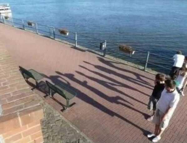 funny-shadows (58)