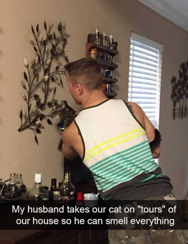 hilarious-cat-snapchats (37)