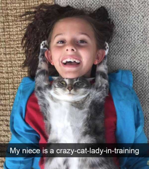 hilarious-cat-snapchats (42)