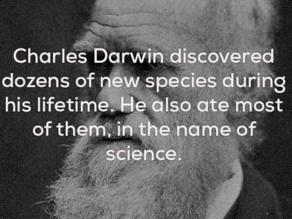 strange-weird-facts (1)