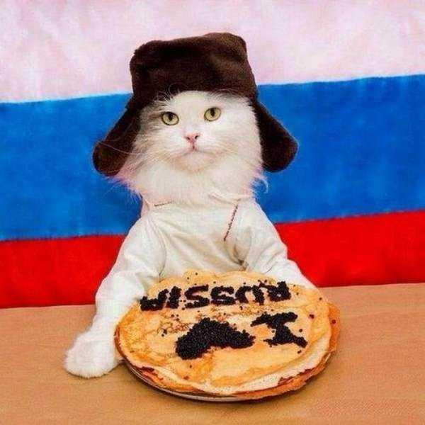 wtf-russia (4)