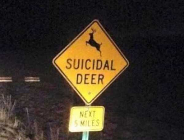 funny-crazy-signs (34)