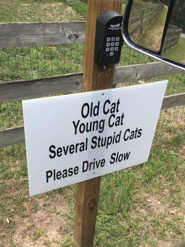 funny-crazy-signs (4)