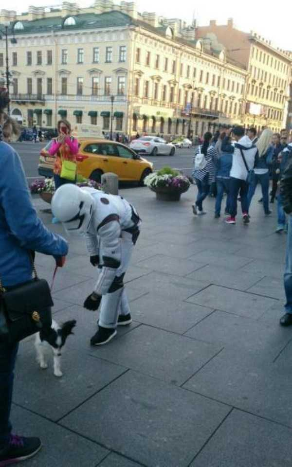 funny-wtf-russia-photos (35)