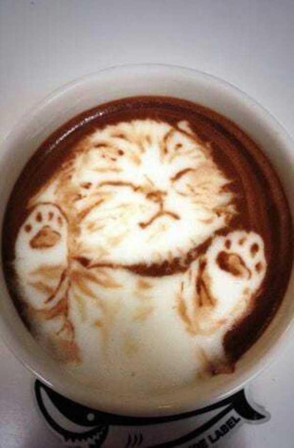impressive-latte-art (2)