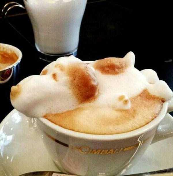 impressive-latte-art (8)